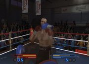 Don King Boxing - Nintendo Wii - photo 3