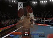 Don King Boxing - Nintendo Wii - photo 5