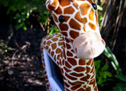 HANNspree Giraffe 8 Digital Photo Frame - photo 4