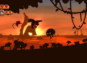 Donkey Kong Country Returns   - photo 3