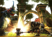 Kingdoms of Amalur: Reckoning - photo 5
