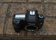 Canon EOS 5D MK III - photo 4