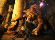 Dragon's Dogma - photo 2