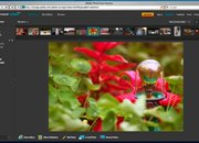 Adobe Photoshop Express Public Beta gets new features - photo 4