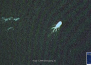 Google Earth finds Loch Ness monster - photo 2