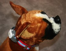 Tagg The Pet Tracker collar keeps your pets smart