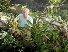 Sky and Sir David Attenborough bringing 3D to the plant world with new TV series