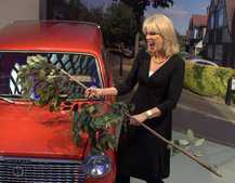 Joanna Lumley shins up a ladder, hits a car, to launch TalkTalk's YouView service