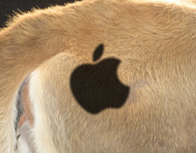 Apple named Best Global Brand in Interbrand report for first time, displaces Coca-Cola