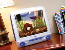 Turn an old Apple iMac into an aquarium yourself, or buy one ready to go