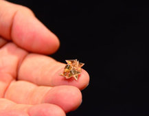 This tiny origami drone wants to fold into your body and dissolve when done