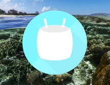 Android 6.0 Marshmallow tips and tricks