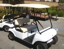 Kremlin to sell off G8 golf carts