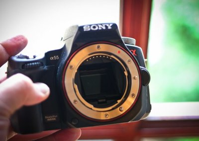 Sony cameras more popular than Nikon