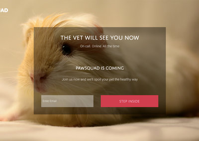 PawSquad lets you visit the vet from your couch at home, goodbye pet box