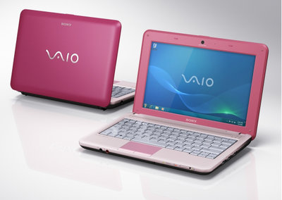 Sony VAIO VPCM12M1E/P notebook