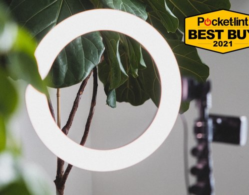 Best ring light 2021: Complete the glow up with these top lights for vlogging, video calls and selfies