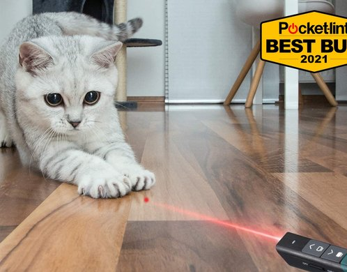 Best laser pointer 2021: Let these gadgets point the way
