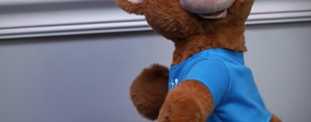 Big Mouth Billy Bass creator launches hilarious Alexa-enabled twerking bears