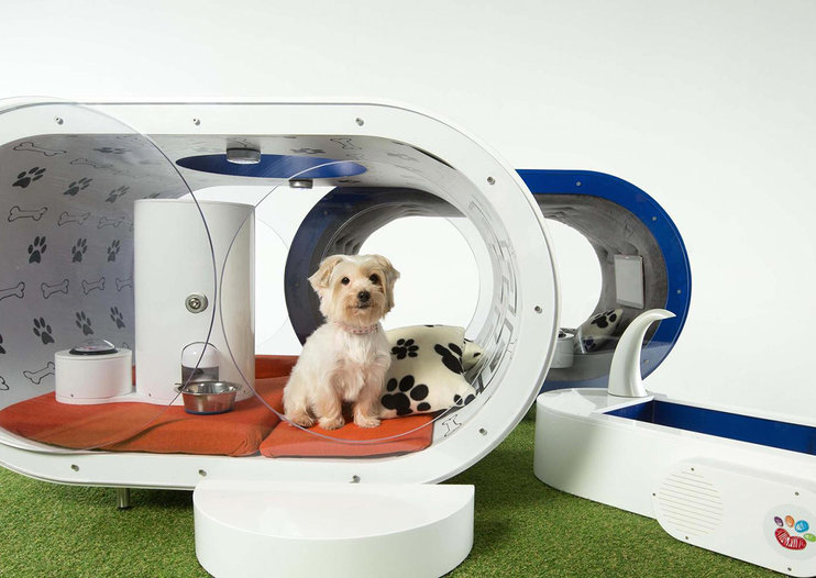 Sent to the doghouse? Not so bad if it's Samsung's £20,000 pooch pad with hot tub