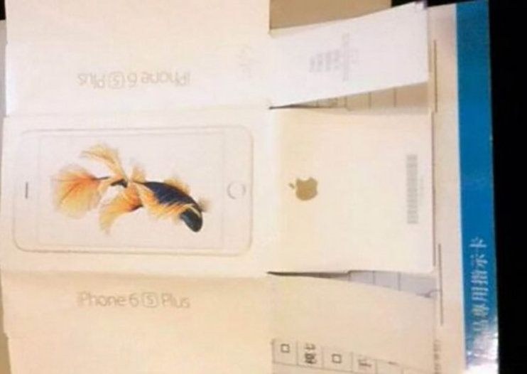 Does this leaked packaging confirm an iPhone 6S Plus?