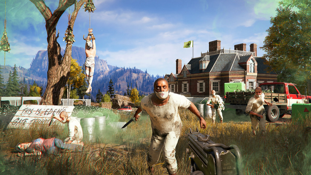 does far cry 5 have coop