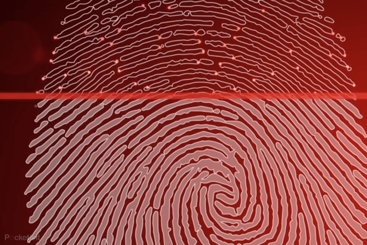 In-display fingerprint readers: How do they work?
