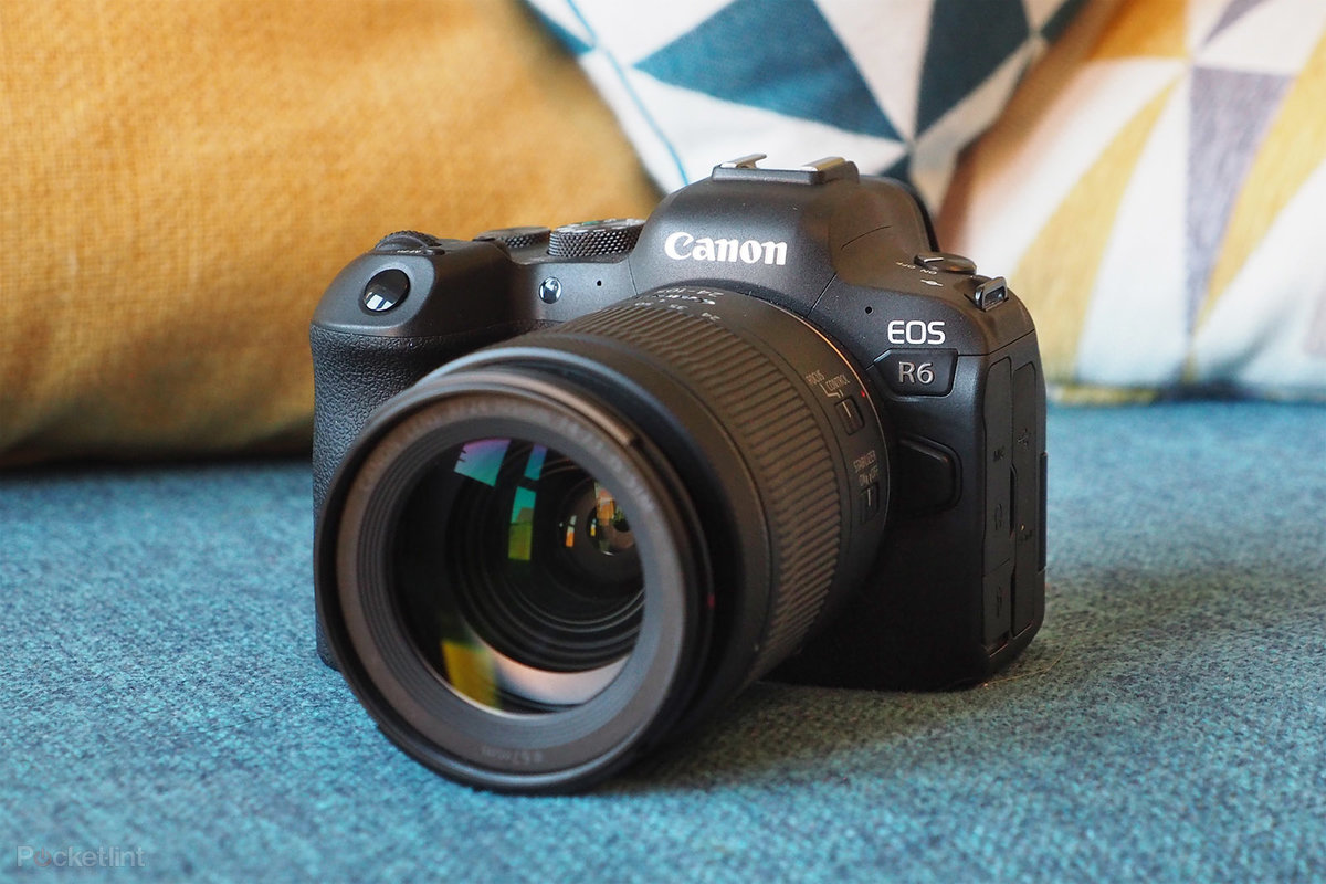 Canon EOS R6 review: Lower resolution, higher quality?