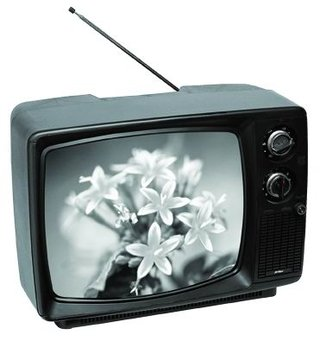 28,000 still using black and white televisions