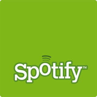 Spotify facing delays for US launch