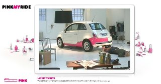 """Hunk"" painting car pink with nail varnish live on Web"