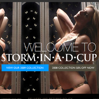 WEBSITE OF THE DAY – Storm in a D Cup