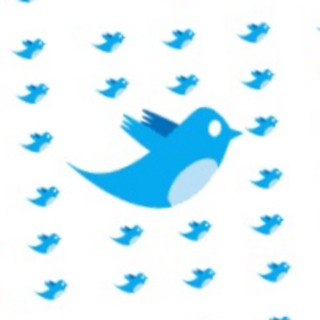 Twitter security hole lets you make anyone follow you