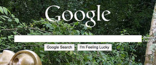 Skin Google's homepage with your own pics
