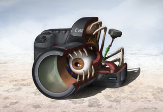 Canon 5D Mark II dissected in gory detail