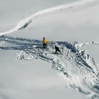 VIDEO: Miniature faking - Whistler style