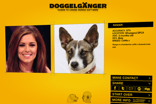 WEBSITE OF THE DAY - Doggelganger