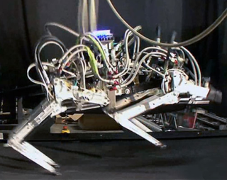 DARPA Cheetah sets robot running record (video)