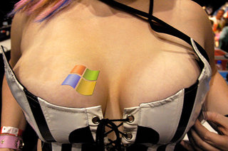 Microsoft no fan of 'big boobs', deletes hidden code