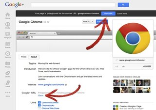 Google starts roll-out of thousands of personalised Google+ URLs