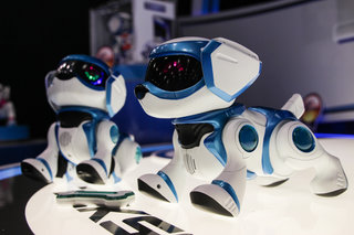 teksta the robotic puppy 2013 pictures and hands on image 5