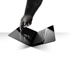 Gorilla Glass coming to touch-enabled laptops, Dell already on board