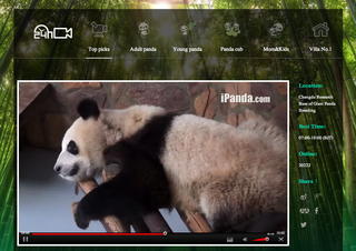 Website of the day: Panda Live