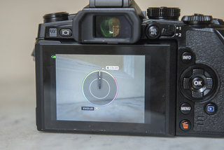olympus to m1 review image 8