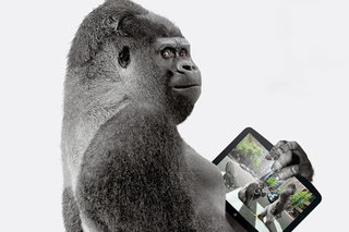 Corning claims Antimicrobial Gorilla Glass as world first