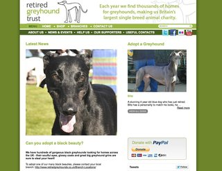Website of the day: Retired Greyhounds Trust