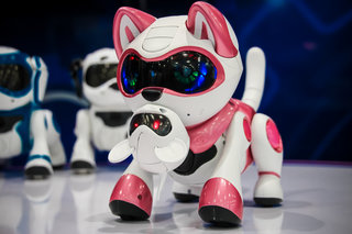 teksta t rex kitty and dalmation pictures and hands on the new robot pet range for 2014 video  image 6