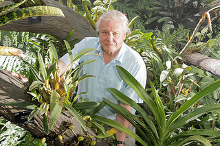 New Sir David Attenborough nature series being made for Oculus Rift