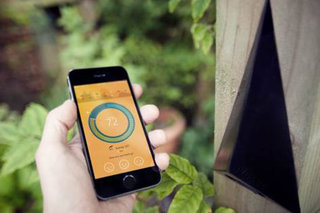 Nosee to tackle hay fever with localised data alerting you when you need it