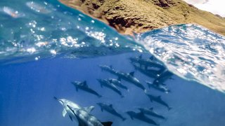 The Best Gopro Photos In The World Prepare To Lose Your Breath image 142